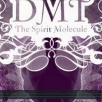 DMT – The Spirit Molecule